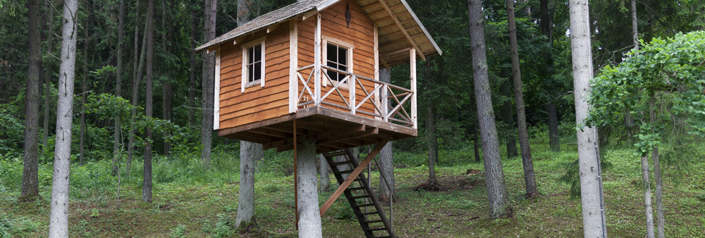 Tree-House-Windows-1000