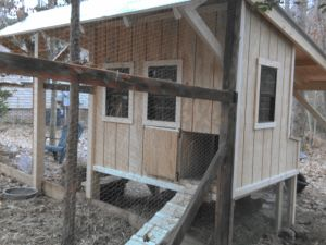 chicken coop windows